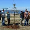 Trees planted in Terry Park on Arbor Day in Heath