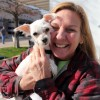 How Rockwall Became a Haven for Pets: Part Two