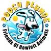 Wet Zone's Pooch Plunge to benefit Friends of Rowlett Animals