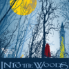 Rockwall Summer Musicals presents Into the Woods June 22-July 1