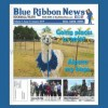 Blue Ribbon News January 2019 Print Edition Hits Mailboxes Throughout Rockwall, Heath