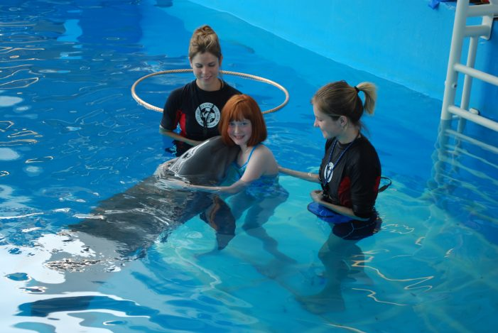 Winter, star of Dolphin Tale, shares connection with Garland girl