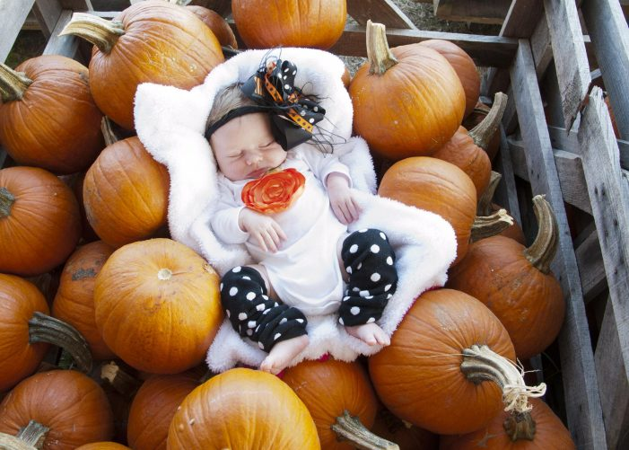 Traditions are born at Rockwall Pumpkin Patch