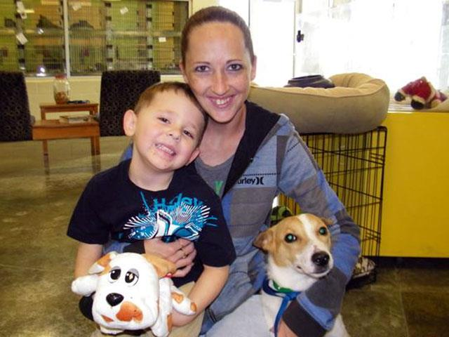 Adopted! Bing, Blue Ribbon News Pet of the Week