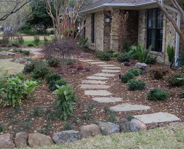 Winter planting for spring and summer enjoyment