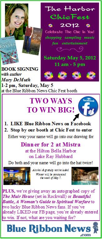 chic fest BRN flyer 04 09 2012 inner2