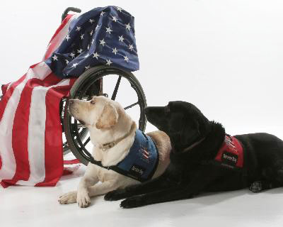 Meet 'Hero Dog' candidate at Patriot Paws fundraising event (VIDEO)