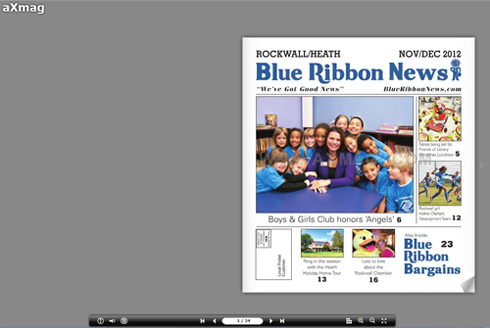 Blue-Ribbon-News-print-November-2012-500-x-335