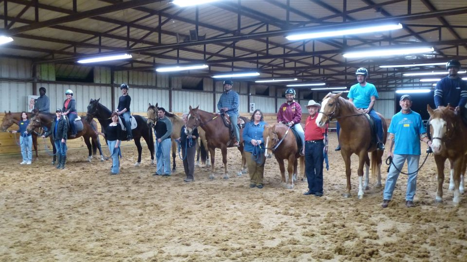 Vote now to help Equest win Gypsy horse for North Texas veterans