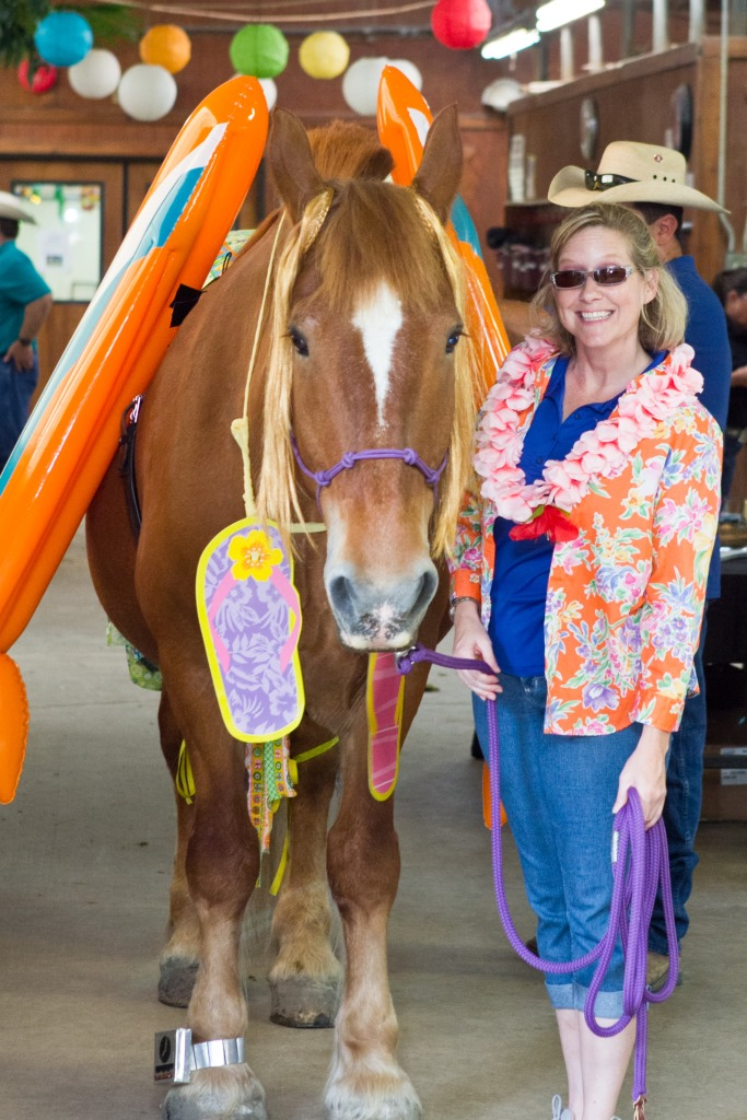 Therapy horses model beach fashions for visitors, donors at Equest Open House in Wylie