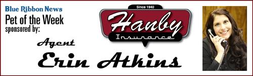 Erin Atkins sponsor banner 500 x 150 300 dpi