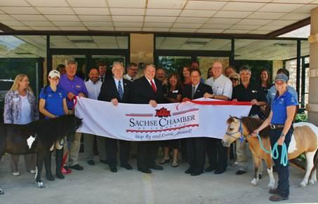 Sachse Chamber welcomes Equest Therapeutic Horsemanship
