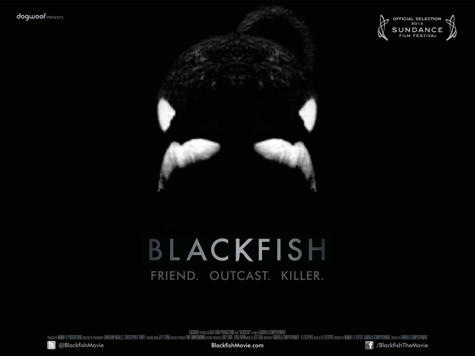 Dogwoof_Documentary_Blackfish_Quad_New_1600_1200_85
