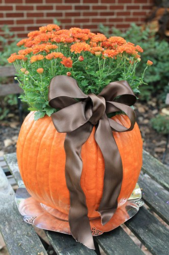Container Gardening with Rockwall Master Gardeners