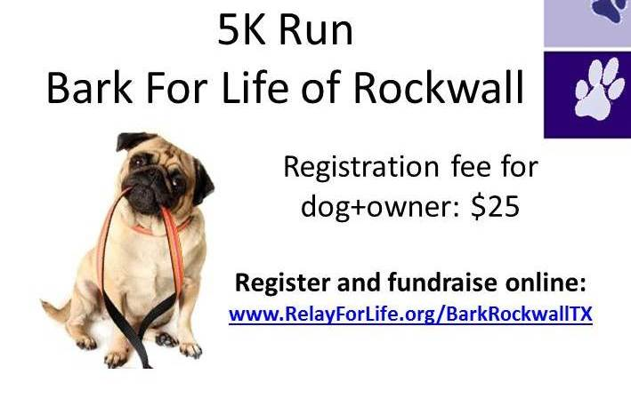 Bark for Life, 5K gives leg up on Rockwall Relay for Life fundraising