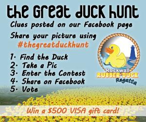 2015_07_22 Duck Hunt 300 x 250 Av3