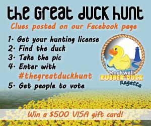 2015_08_03 Duck Hunt 300 x 250 Av4