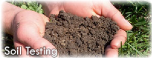 Soil testing helps your landscape look it 39 s best blue for Soil ribbon test