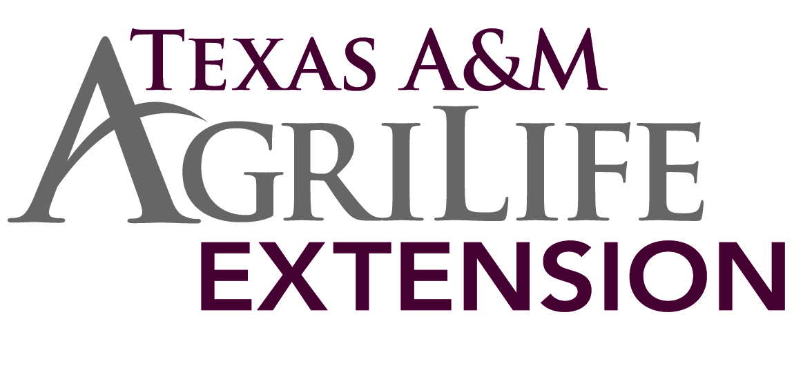 Rockwall County's Texas A&M AgriLife Extension Celebrates 20 Years of the Texas Community Futures Forum