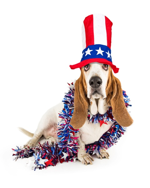 Memorial Day at Rest Haven: Patriotism & Puppies on Parade