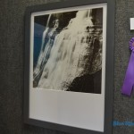 "Best of Show: Greg Lubiani, ""brandywine falls"" (photography)"