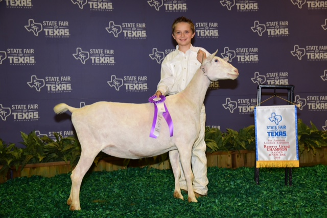 Springer Elementary student earns Reserve Grand Champion honors at State Fair livestock show