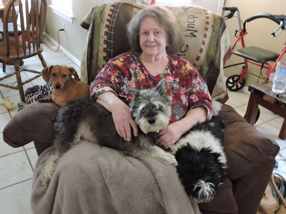 Ani-Meals program shows love to pets of homebound seniors
