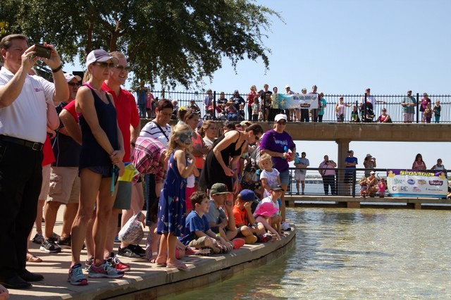 Rubber Duck Regatta set to make huge splash in Rockwall