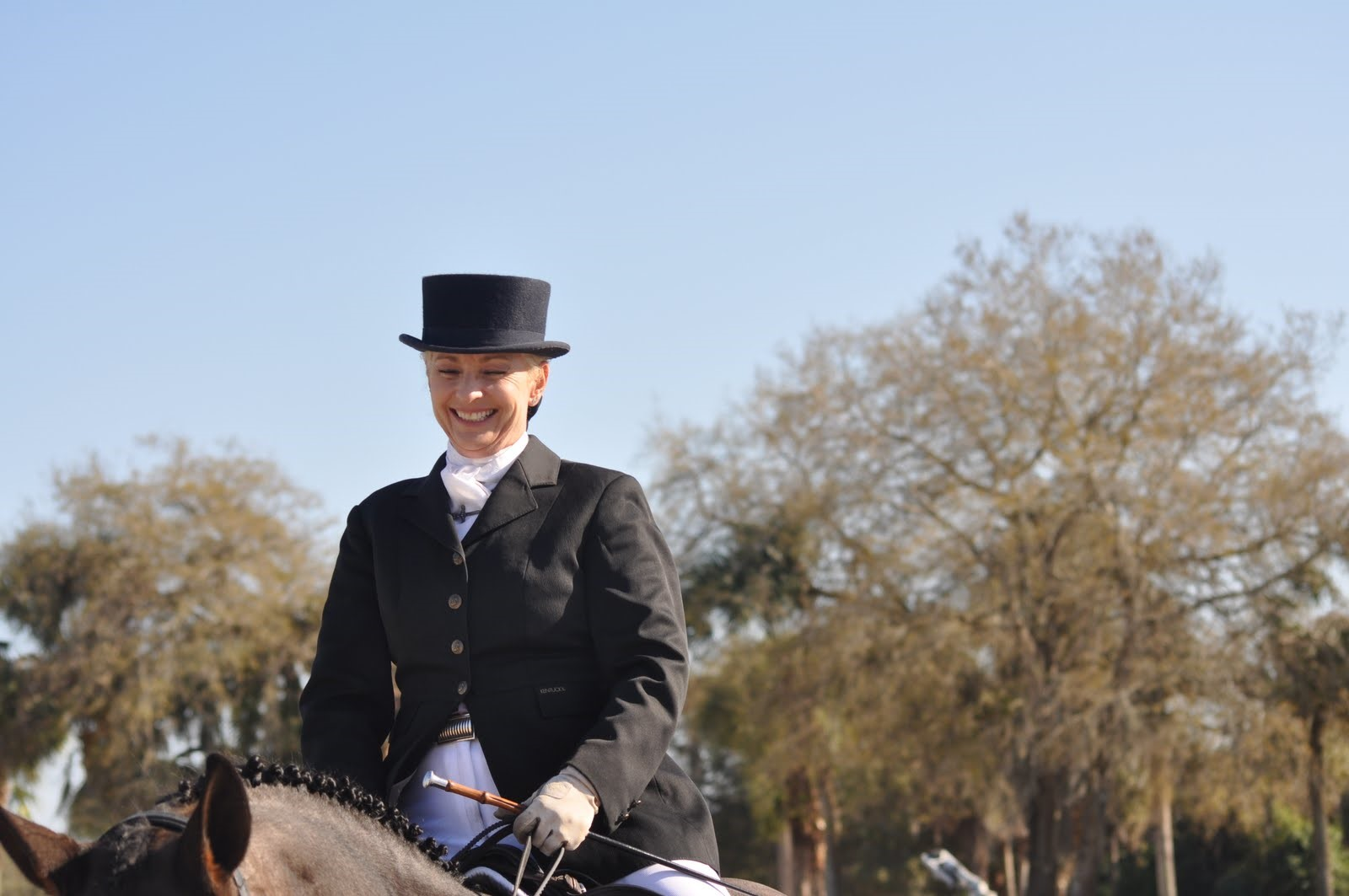 Black Star Sport Horses in Rockwall announces fall 2017 events