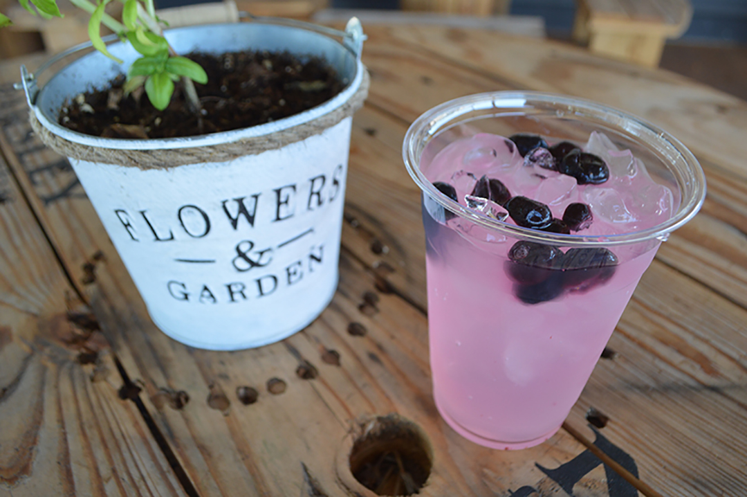 Blueberry Lavender Lemonade at Prayer Lavender Garden