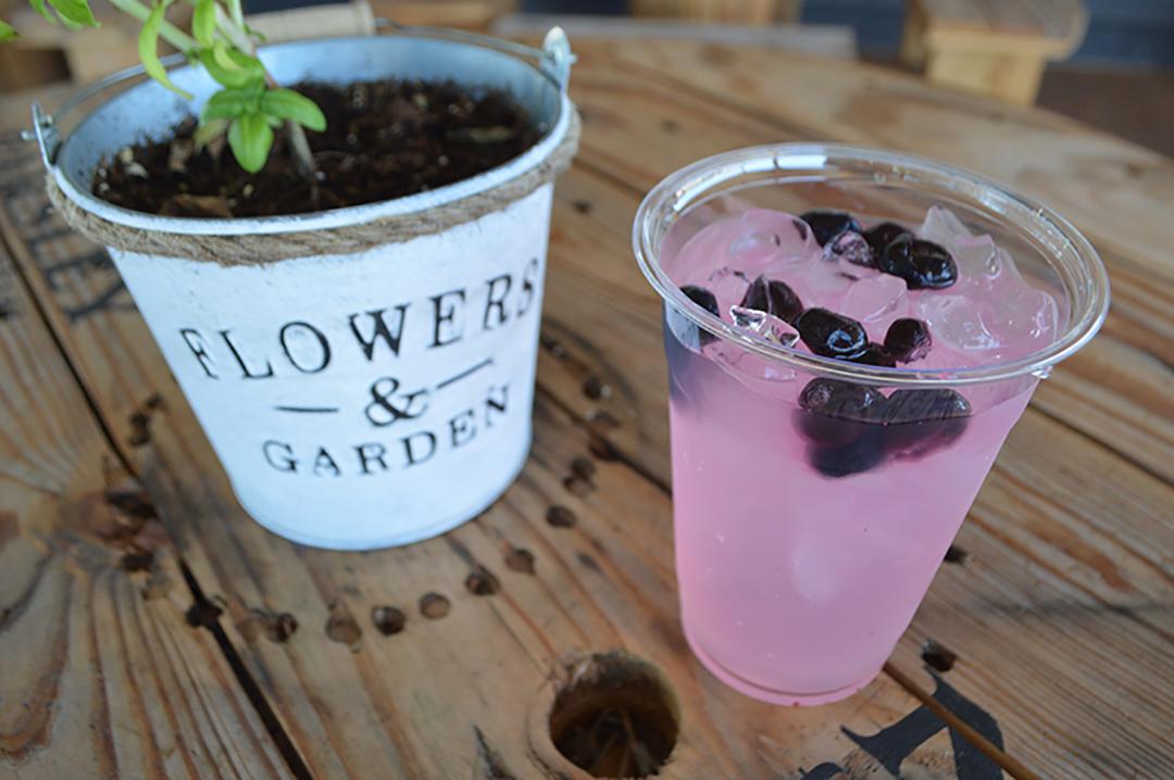 Blueberry Lavender Lemonade at Prayer Lavender Garden