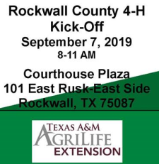 Rockwall County 4-H Celebrates New Year with Kick-Off Event