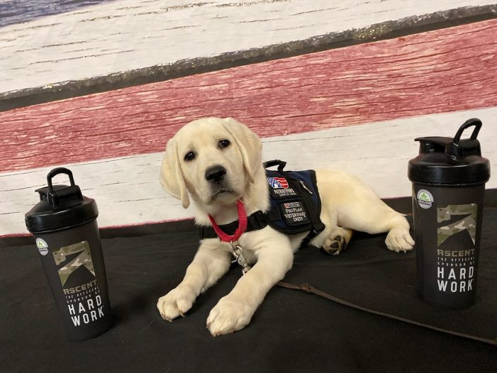 Patriot PAWS Service Dogs receives $14,000 from Ascent Protein