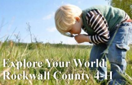 Rockwall County 4-H to celebrate its new year with kick-off event