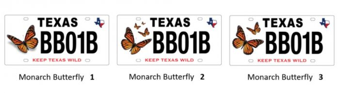 Texas Parks & Wildlife seeks public input on Monarch Butterfly conservation license plate design