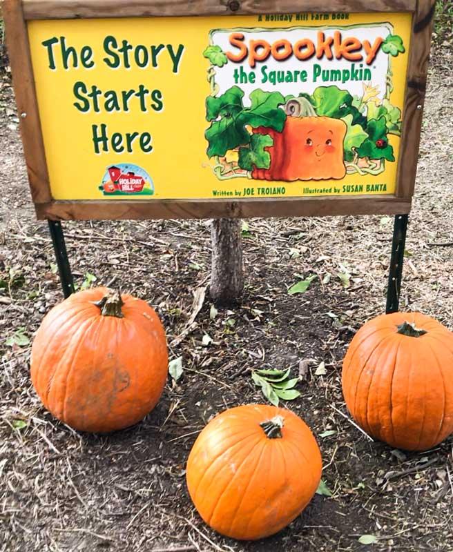 Spookley the Square Pumpkin storyboard at Blase Family Farm