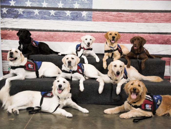 Pet Supplies Plus, Natural Balance partner to present Patriot PAWS with $50,000 donation on Veteran's Day