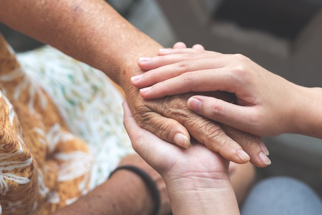Long distance caregivers: Visiting with your elderly relative