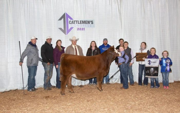 Local young breeder crowned Cattlemen's Congress champion
