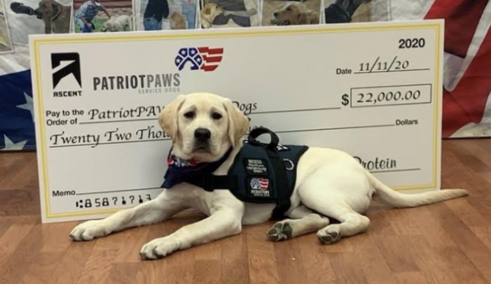 Patriot PAWS Service Dogs of Rockwall receives $22,000 donation from Ascent Protein
