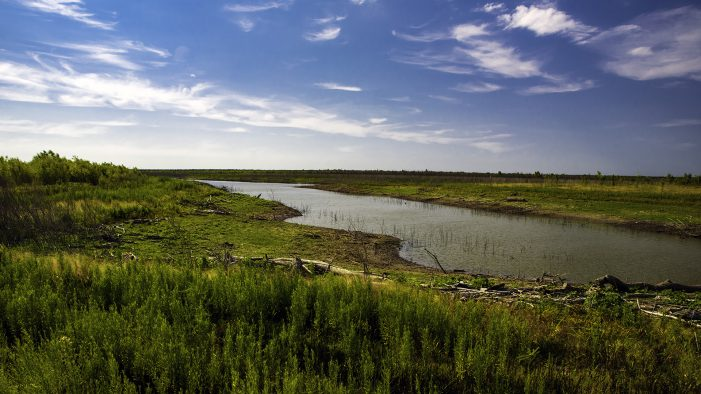 Senator Bob Hall and Representative Bryan Slaton file legislation to safeguard the productivity of land in Texas and fair competition to the energy sector