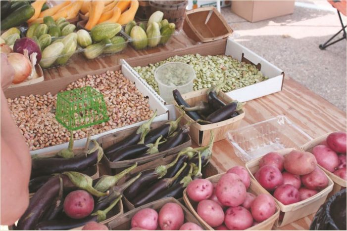 Rockwall Farmers Market returns to Downtown Square May 1