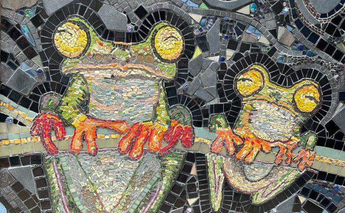 Local artist transforms home into mosaic wonderland
