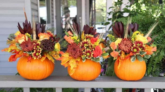 Fall-themed fun things to do in Rockwall County and beyond