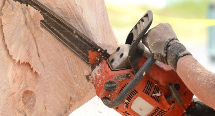 New 'chainsaw art' project underway at Harry Myers Dog Park