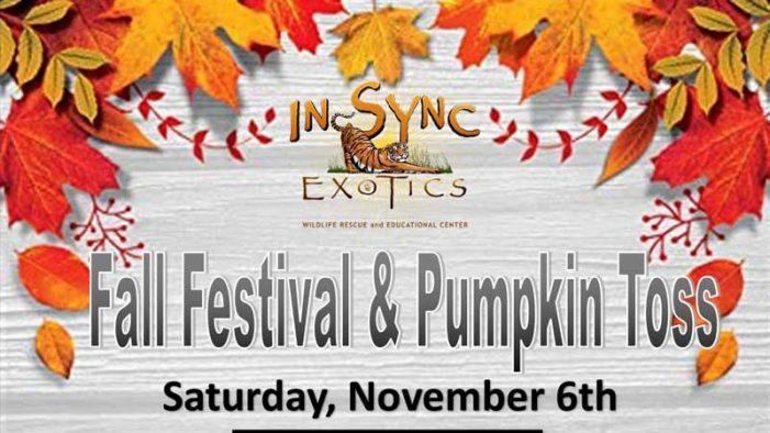 Big Cat Pumpkin Toss and Fall Festival at In-Sync Exotics Nov. 6th